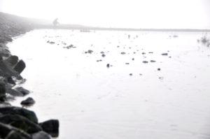 """Fotografie von Heike Stommel mit dem Titel """"Am Ufer"""""""