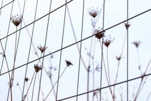 """Fotografie von Heike Stommel mit dem Titel """"Stadtlinien"""""""