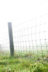"""Fotografie von Heike Stommel mit dem Titel """"Nebelzaun #2"""""""
